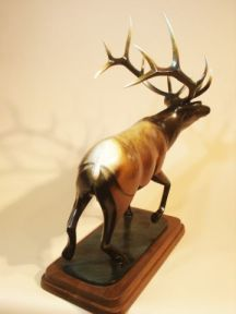 Bull Elk : Emerging from the Spirit Series