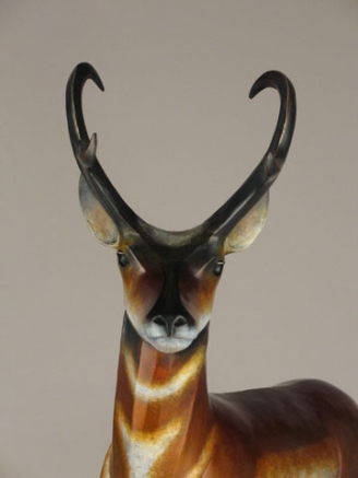 Pronghorn Antelope: Emerging from the Spirit Series